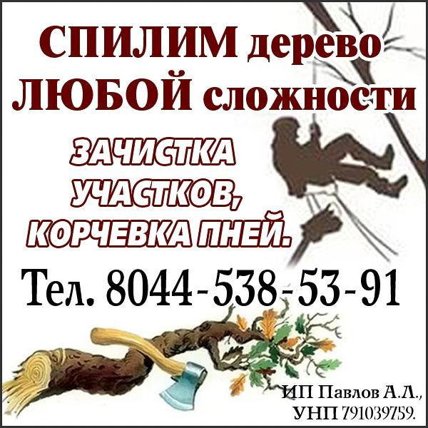 http://www.rodniva.by/wp-content/uploads/2017/01/павлов-на-сайт-копия.jpg