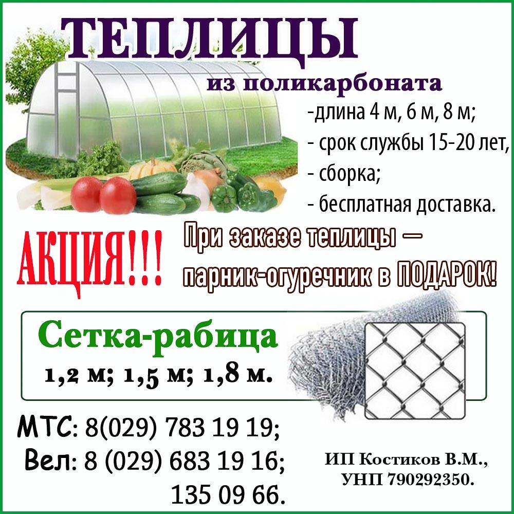 http://www.rodniva.by/wp-content/uploads/2017/02/костиков-на-сайт-.jpg