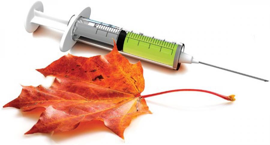 картинка вакцинация против гриппа